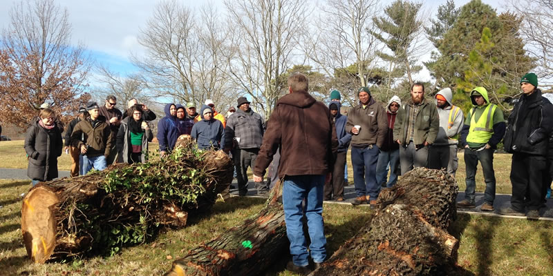 Members of the urban forestry community in Baltimore learn more about grading urban logs.