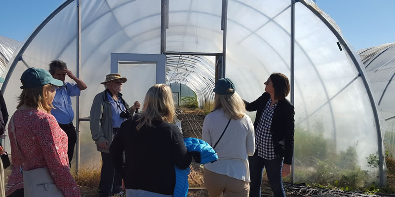 Scientists and practitioners discuss community stewardship and urban agriculture in Baltimore.