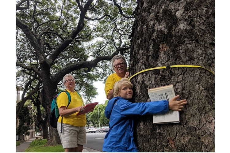 Citizen Foresters surveying street trees in Honolulu.