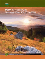 thumbnail image of cover of Forest Service Strategic Plan