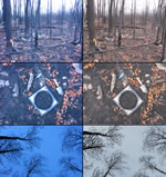 photo series for a plot location affected by a high severity crown fire in a mixed aspen-fir stand. left-side photos were taken with an infrared camera, right-side photos were taken with a visible light camera. The cardboard frames in the center indicate the 30-cm soil sample locations prior to sampling.