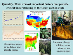 [image:] Changes in climate, atmospheric components, land use and disturbance regimes affect forest carbon sequestration and biofuel product. It is important to understand these processes and attribute the effects to different causes