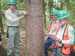[photo:] U.S. Forest Service, Northern Research Station project leader John Brissette (left), forester Rick Dionne (right), and a University of Maine, School of Forest Resources student make the one-millionth tree measurement in the Forest Service's experiment on the PEF in 2010.