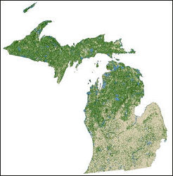 Forest Nonforest Map Of Michigan