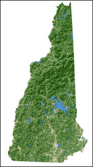 Forest Nonforest Map Of New Hampshire