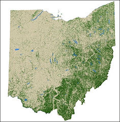 Forest Nonforest Map Of Ohio