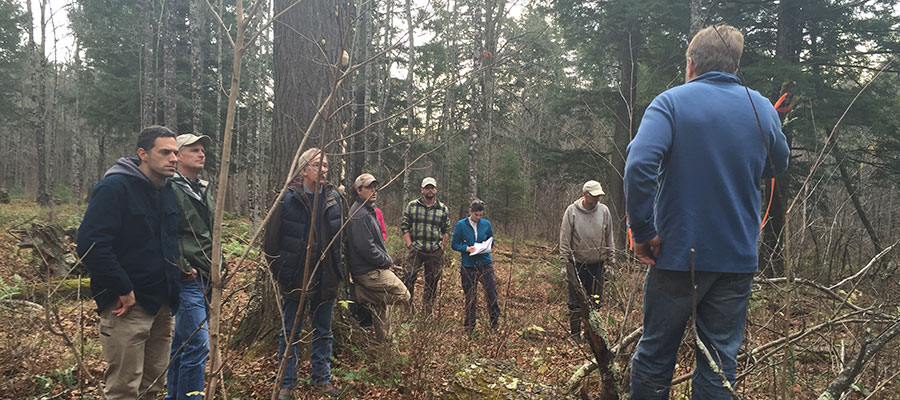 Forest managers tour a study site.