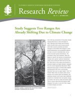 cover image of the Autumn 2010 Research Review