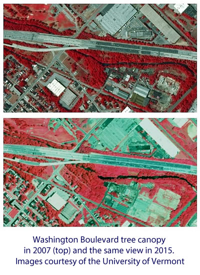 The image shows Washington Boulevard tree canopy in 2007 (top image) and the same view in 2015. Images courtesy of the University of Vermont