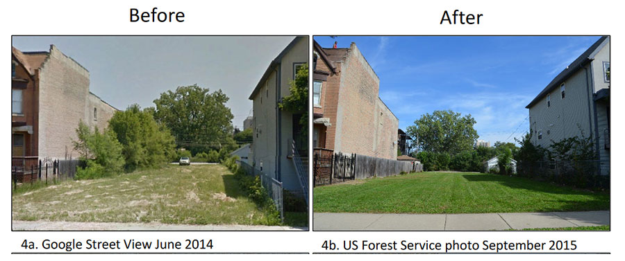 Photos before (left) and after (right) showing the removal of trees and large shrubs