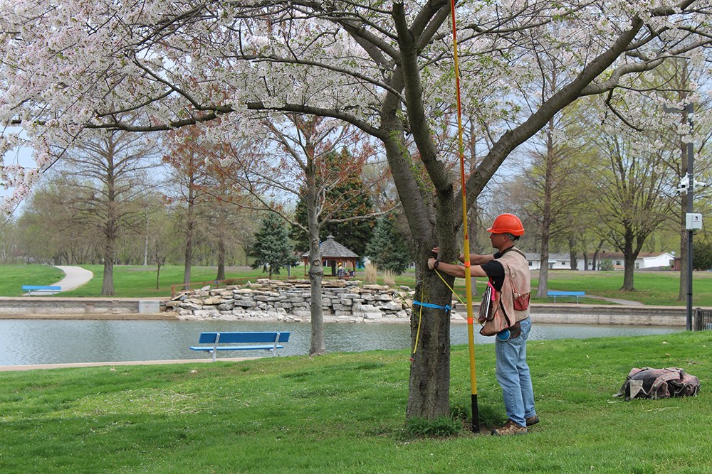 Thom Bergstrom at Urban Certification April 11, 2019 St. Ferdinand Park, Florissant, MO just outside of St. Louis. USDA Forest Service photo by Sjana Schanning.
