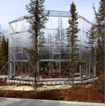 Ten open-topped enclosures built over about 7 acres of bog on the Marcell Experimental Forest will allow scientists to manipulate conditions to simulate a variety of hypothetical climate change scenarios and record a range of effects. Photo courtesy of Oak Ridge National Laboratory