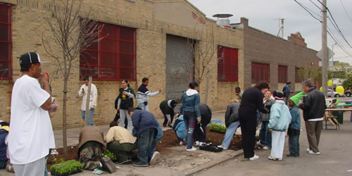 [photo:] Tree planting in the South Bronx.