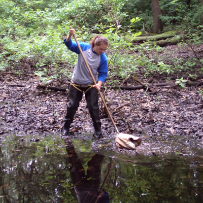 [photo:] Susan Stanley collecting samples from a vernal pool