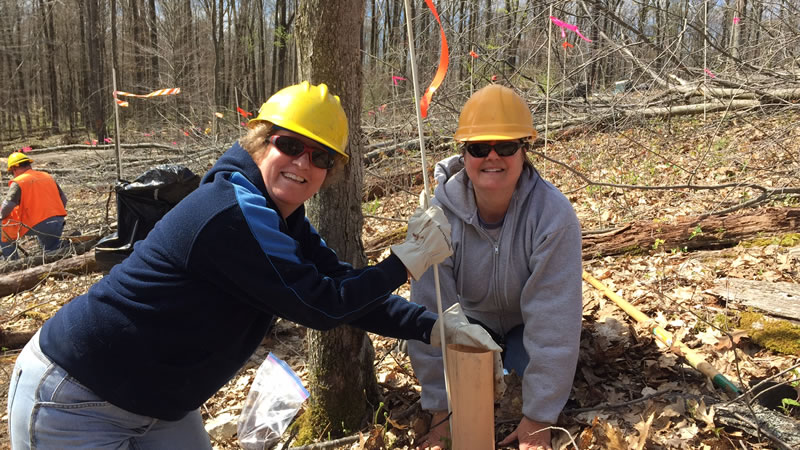 Andrea Hille and Jeanne Hickey  helping plant chestnuts on the Allegheny National Forest