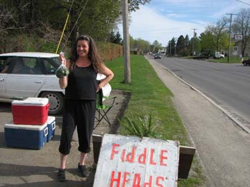Selling fiddleheads along the road, photo by Michelle Baumflek