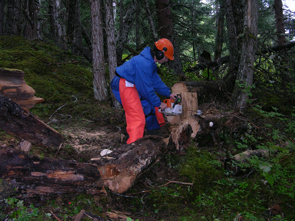 [photo:] Collecting samples for decay analysis in Alaska.