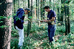 [image:]  Participants in a SILVAH Training Session conduct a systematic inventory of forest overstory and understory as part of a field exercise in the course.