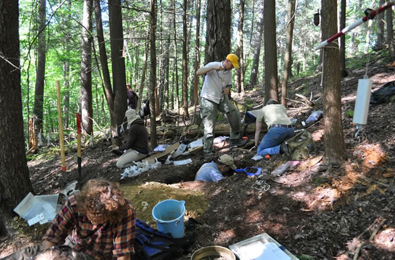 Forest Service scientists studying and collecting soil in a forest.