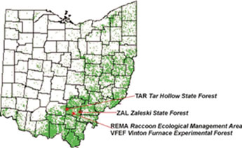 Understanding the ecological roles of natural disturbance ... on wharton forest map, tahuya state forest map, dupont state forest map, prentice cooper state forest map, shawnee state forest map, greene-sullivan state forest map, hocking hills state forest map, capitol state forest map, stewart state forest map, kanawha state forest map, kettle moraine state forest map, pa state forest map, michaux state forest map, savage river state forest map, fernwood state forest map, mohican state forest map, maumee state forest map, naugatuck state forest trail map, stokes state forest map,
