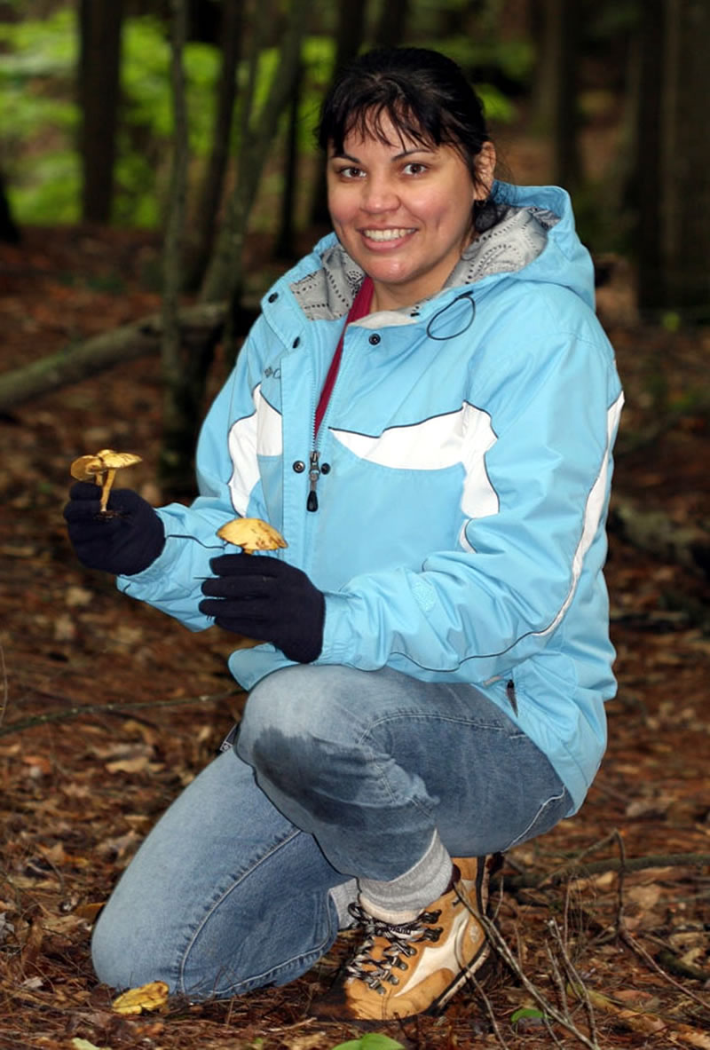 Dr. Beatriz Ortiz-Santana collects fungi in a forest clearing.