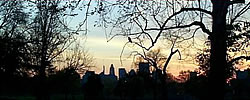 [photo:] Sunset behind the Baltimore skyline  - distant downtown high rise buildings framed by trees