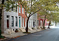 [photo:]Mature London Planetrees shade attached row houses in Baltimore, MD