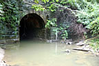 [photo:] Water polluted from overflowing sanitary sewers emerging from tunnel --Gynns Run, Baltimore, MD